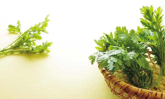 春菊の旬は11月〜2月!春菊の料理は加熱方法がコツ