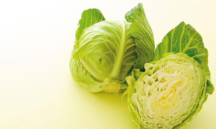 春野菜キャベツの旬は4月!キャベツの「寒玉」「春玉」とは