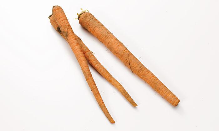 貴重な伝統野菜・在来種をご紹介!定方さんの国分にんじん