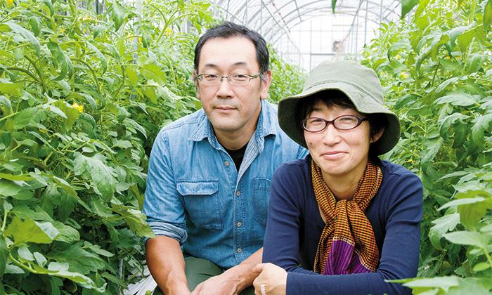 【前編】自根しか知らないトマト農家!長野県上伊那郡の石川農園