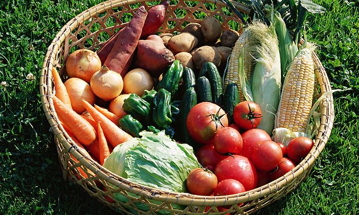 【野菜はらでぃっしゅぼーや】8月31日は「野菜の日」。「野菜選びのポイント」や「調理に困る野菜」とは。