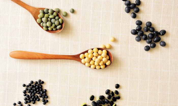 【大豆の種類】「青大豆」「黄大豆」「黒千石大豆」「くらかけ大豆」「黒大豆」の違い