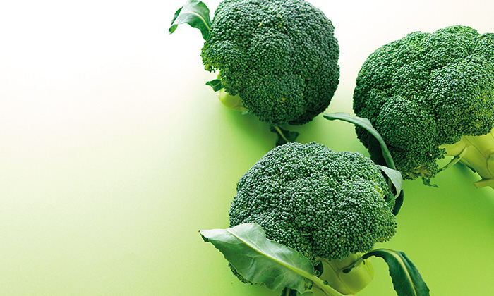 冬がおいしい花野菜「ブロッコリー」の旬は11月〜3月