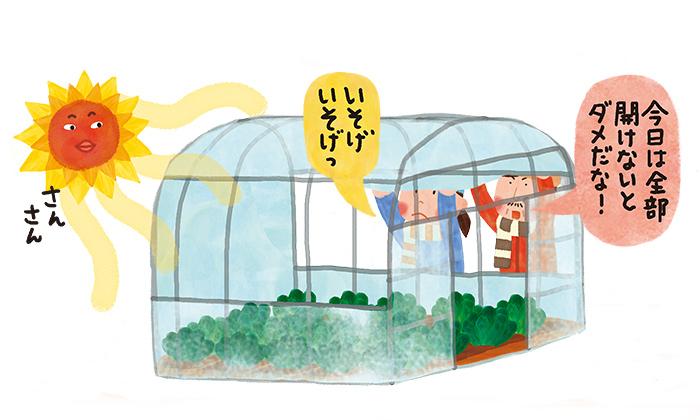 野菜のハウス栽培のメリットとは