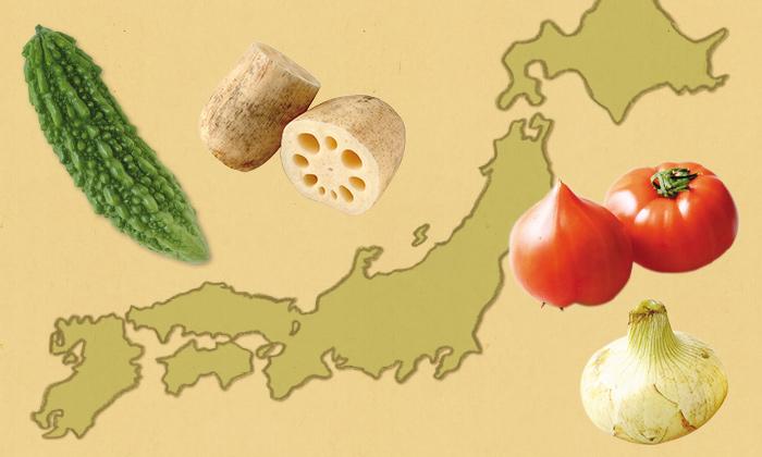 「黒ボク」「グライ土」「赤黄色土」「ジャーガル」野菜と生かし合う4つの土の種類とは。