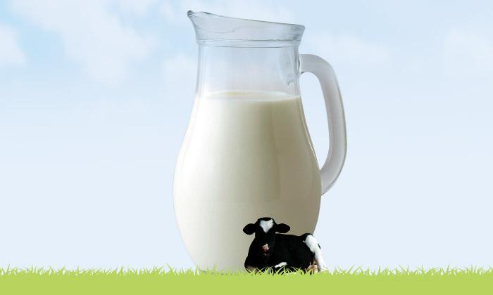【牛乳に関するQ&A】「生乳(せいにゅう)」と「牛乳」の違いとは