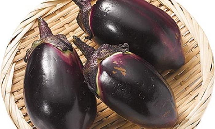 【楽しくておいしい珍しい野菜】昔なす(むかし茄子)とは