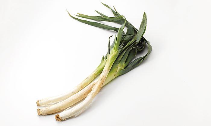 【珍しくておいしい野菜】すき焼きにぴったり「松本一本ねぎ」とは