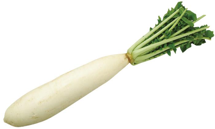 【珍しくておいしい野菜】「三浦大根」とは