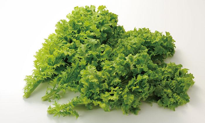 【珍しくておいしい野菜】「わさび菜」とは