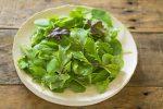 ルッコラの旬とは?手軽に作れるサラダレシピも合わせてご紹介!