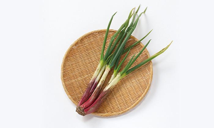 【珍しくておいしい野菜】やわらかさが自慢の赤いネギ「赤ねぎ(赤ひげ)」とは