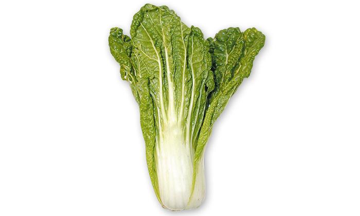 【珍しくておいしい野菜】中国から伝来した「長崎唐人菜」とは