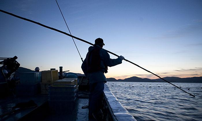 買って応援! 持続可能な漁業「MSC認証」とは