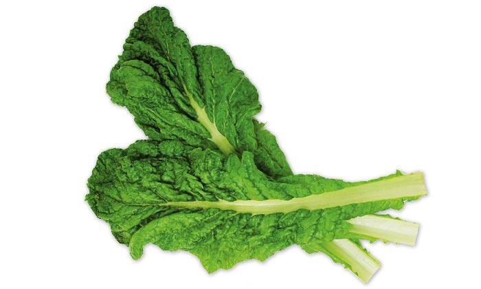 【珍しくておいしい野菜】縁起もの野菜「鰹菜(かつおな)」とは