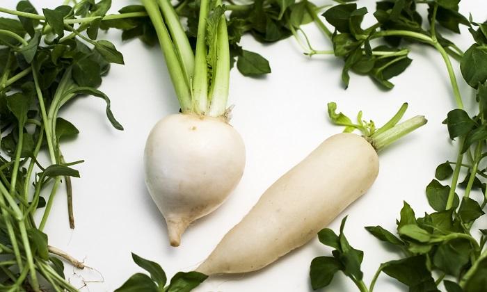 春野菜に含まれる「植物性アルカロイド」。その特徴と代表的な野菜を紹介!