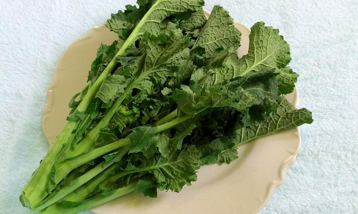 【珍しくておいしい野菜】甘みがあって栄養も豊富「宮内菜」