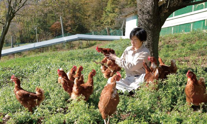 生を謳歌する鶏たちからいただく、命のたまご