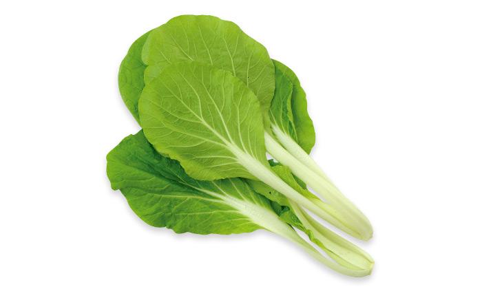 【珍しくておいしい野菜】「大阪しろ菜」