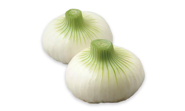 【珍しくておいしい野菜】辛味が少なく柔らかい愛知白玉ねぎ